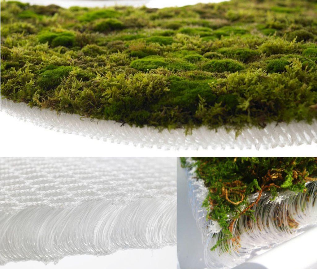 Il tappeto di muschio di Makoto Azuma