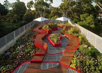 I tetti verdi dell'Università di Melbourne