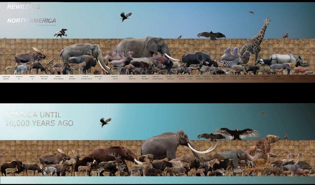 Il programma Rewilding