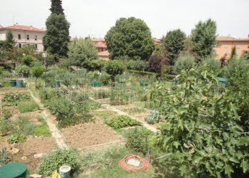 Orti urbani a Bologna