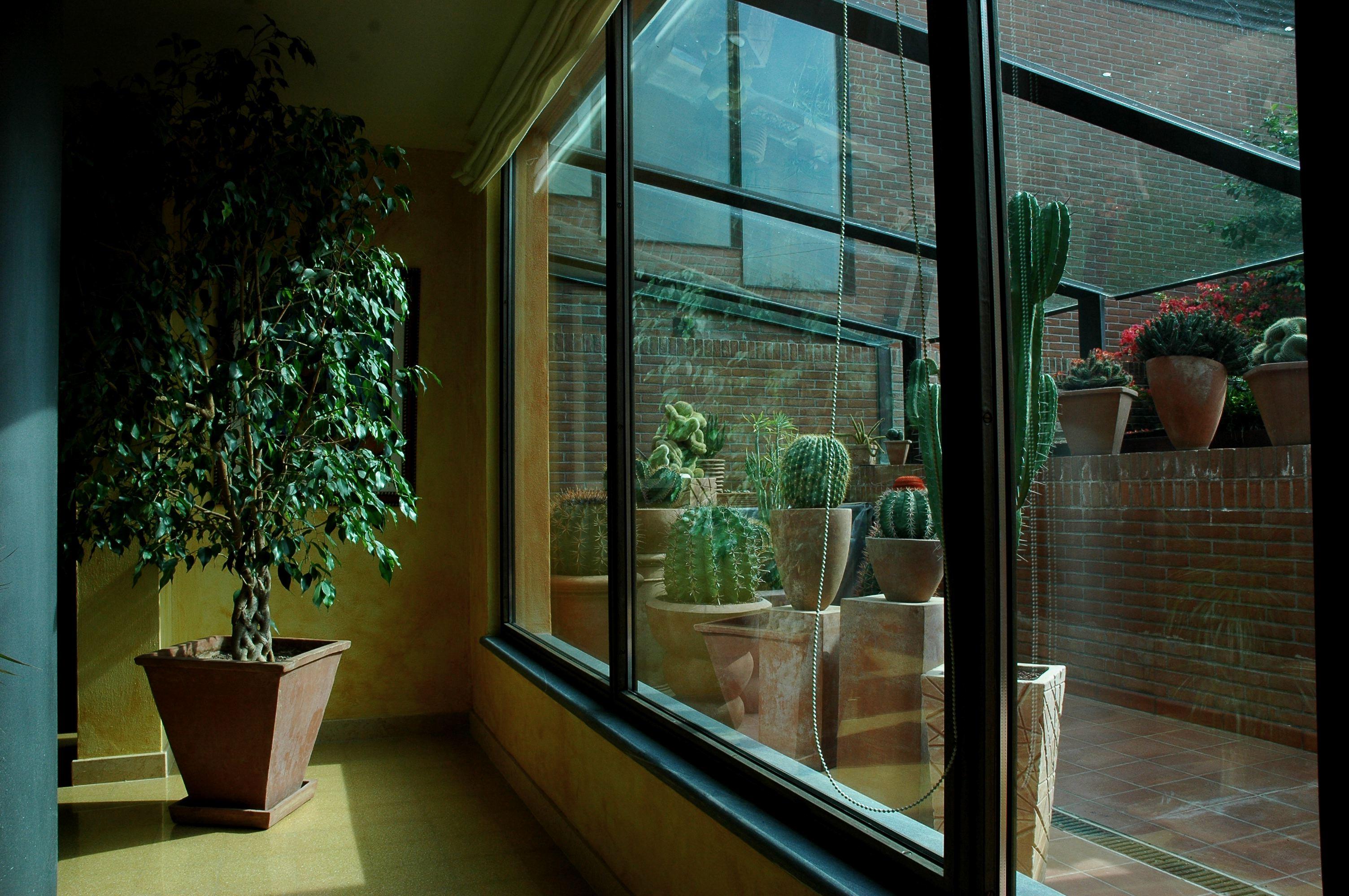 Inquinamento indoor le regole per proteggere la nostra - Proteggere casa ...