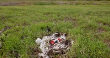 Tempi degradazione dei rifiuti