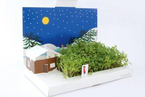 Postcarden, le cartoline vegetali