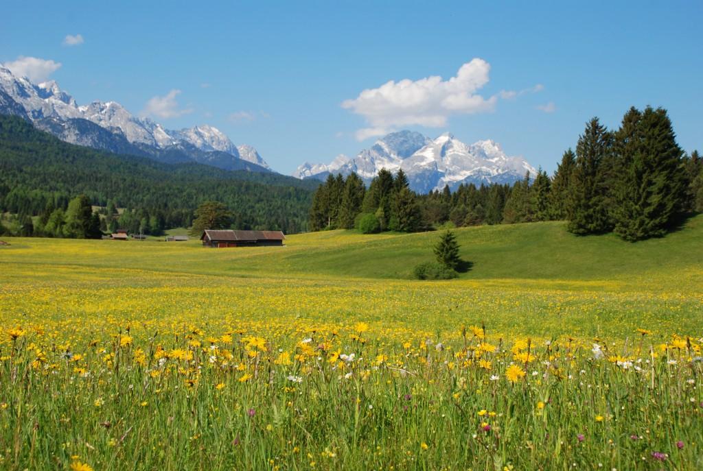 Un tipico paesaggio alpino
