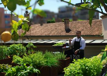 L'orto sul tetto dell'Hotel Milano Scala (foto dal profilo Flickr dell'hotel)