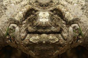 Una delle Dream Creatures del fotografo Elido Turco