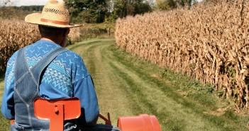 Un contadino al lavoro