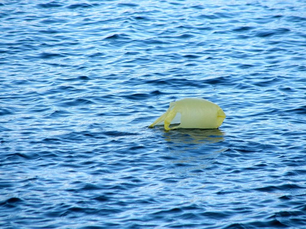 Una borsa di plastica alla deriva in mezzo al mare