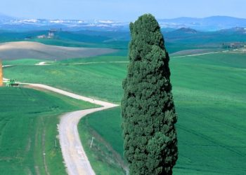 Un paesaggio italiano (foto: freebestwallpaper.com)