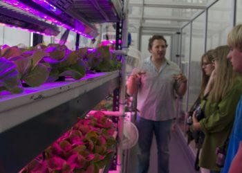 Il sistema di coltivazione CityFarm (foto: http://tribeawesome.com)