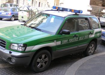 Un'automobile del Corpo Forestale dello Stato (foto: wikimedia.org)