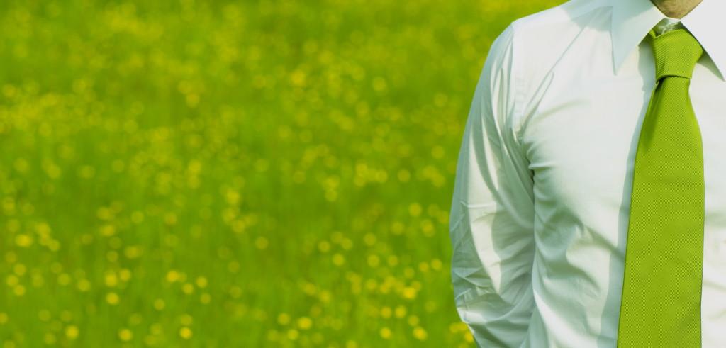 Green Job (foto: www.innio.biz)