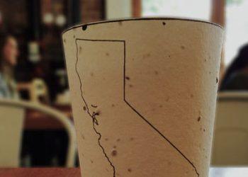 Il prototipo del bicchiere biodegradabile. Foto: huffingtonpost.com