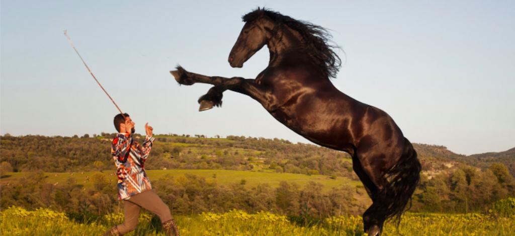 Un cavallo con il suo domatore (foto: www.vanityfair.it)