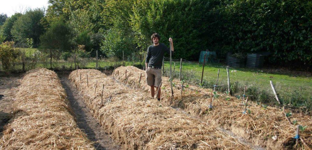 Un orto coltivato con agricoltura sinergica