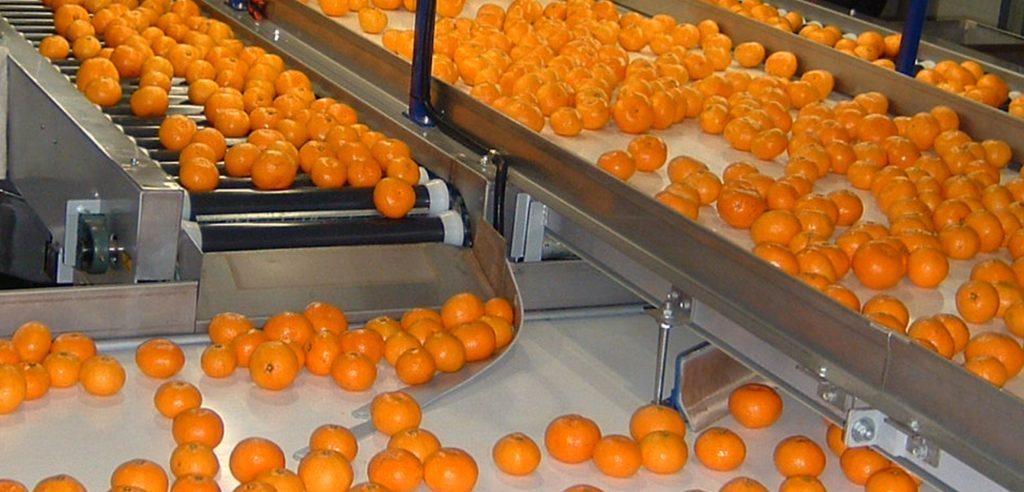 Un impianto per la lavorazione degli agrumi (foto: www.unitec-group.com)