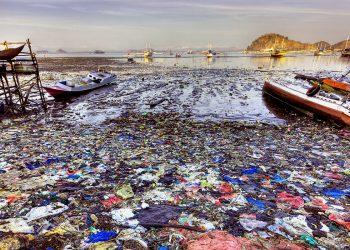 La superficie inquinata di una baia (foto: america.aljazeera.com)