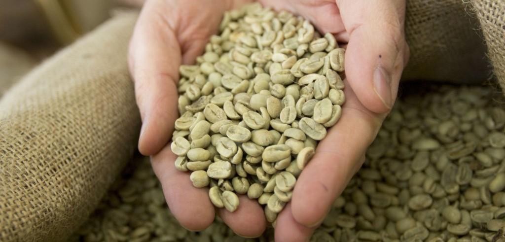 Caffè verde (foto: salute.leonardo.it)