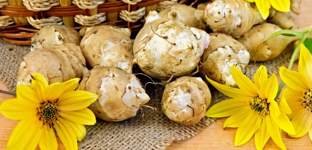 Fiori e radici di topinambur (foto: mangiarebuono.it)