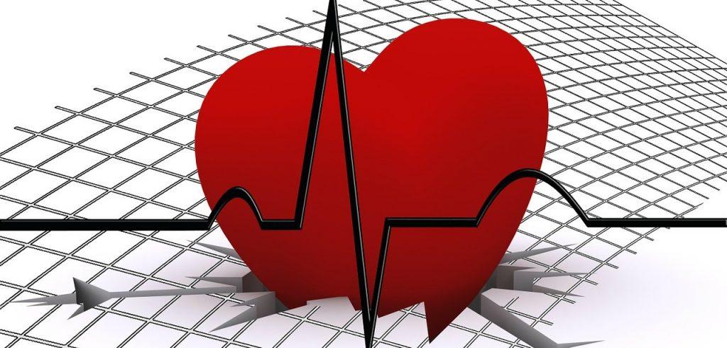 Il cuore è uno degli organi messi maggiormente a rischio da un eccesso di omocisteina (foto: nutrigeneticasardegna.altervista.org)