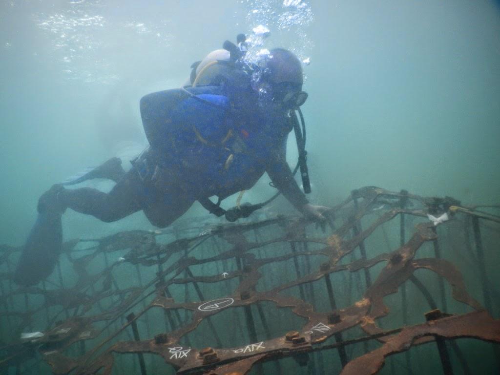 La barriera corallina artificiale