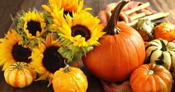 Zucche e fiori autunnali (foto: blog.pianetadonna.it)