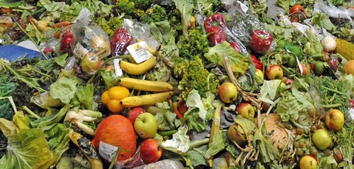 cibo-nella-spazzatura