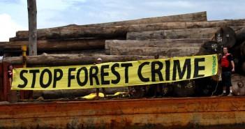 greenpeace-deforestazione