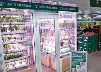 orto idroponico supermercato_berlino
