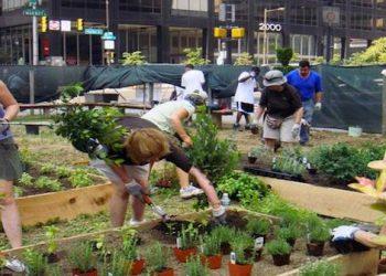 Pop-up Garden Philadelphia