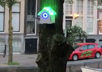 treewifi amsterdam