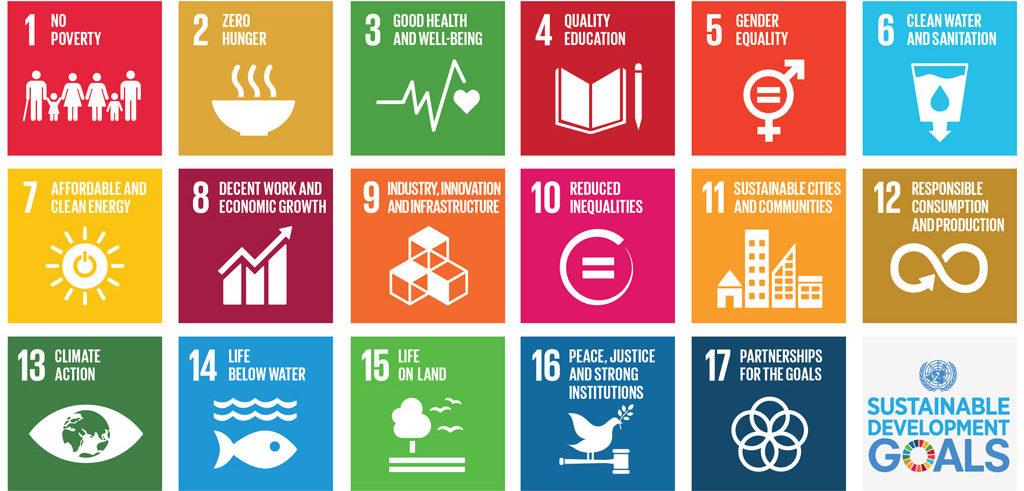 17 principi Agenda 2030 per la sostenibilità