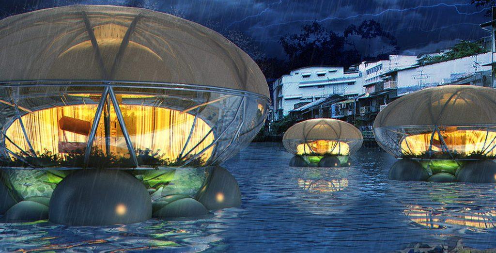 Jelly Fish Lodge