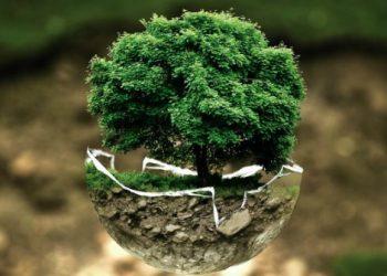 Le 10 aziende più sostenibili