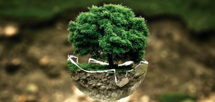 Le 10 aziende più sostenibili al mondo - Green.it