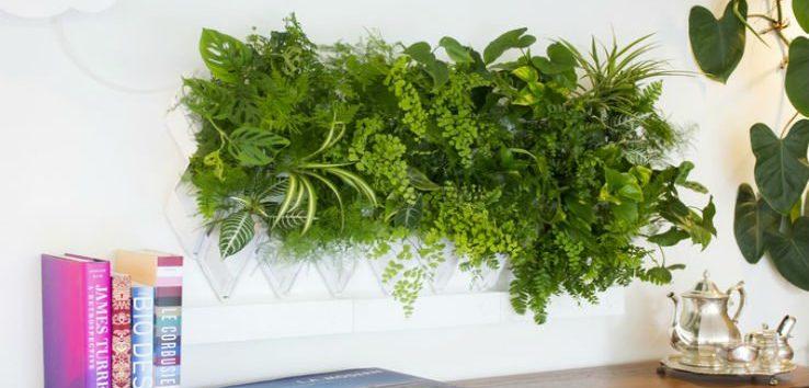 Giardini verticali il verde da appendere al muro - Giardini verticali interni ...