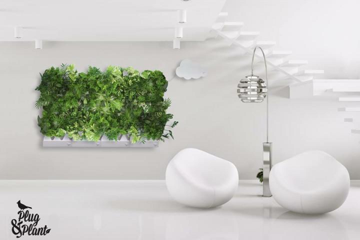 La società messicana Vertical Green lancia Plug & Plant un nuovo sistema che rivoluziona il mondo dell'interior design e dei giardini verticali