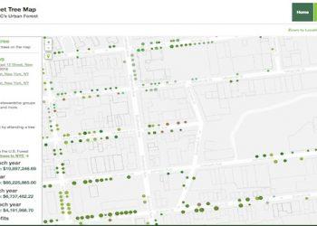 nyc-street-tree-map