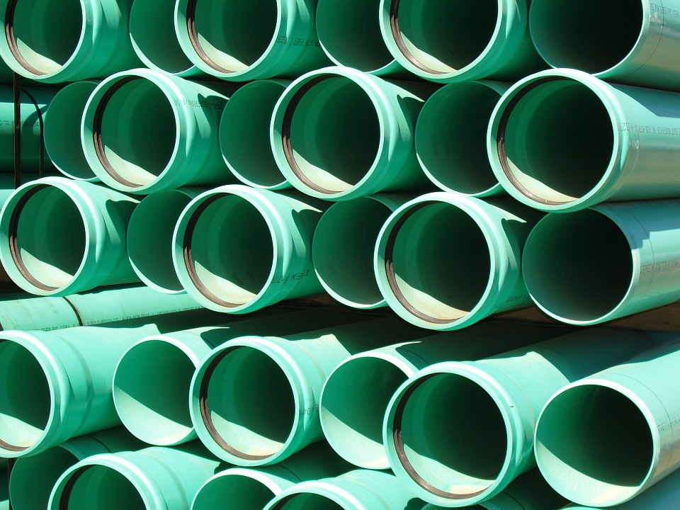 Alcuni scienziati del Regno Unito hanno scoperto che è possibile produrre una plastica innovativa utilizzando una sostanza chimica derivante dai pini