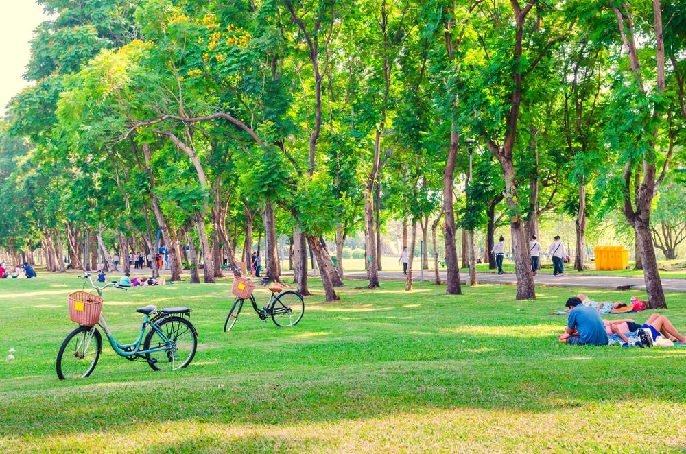 La cura degli spazi di verde pubblico cittadino è uno dei tanti modi con cui è possibile valutare la capacità amministrativa di un comune