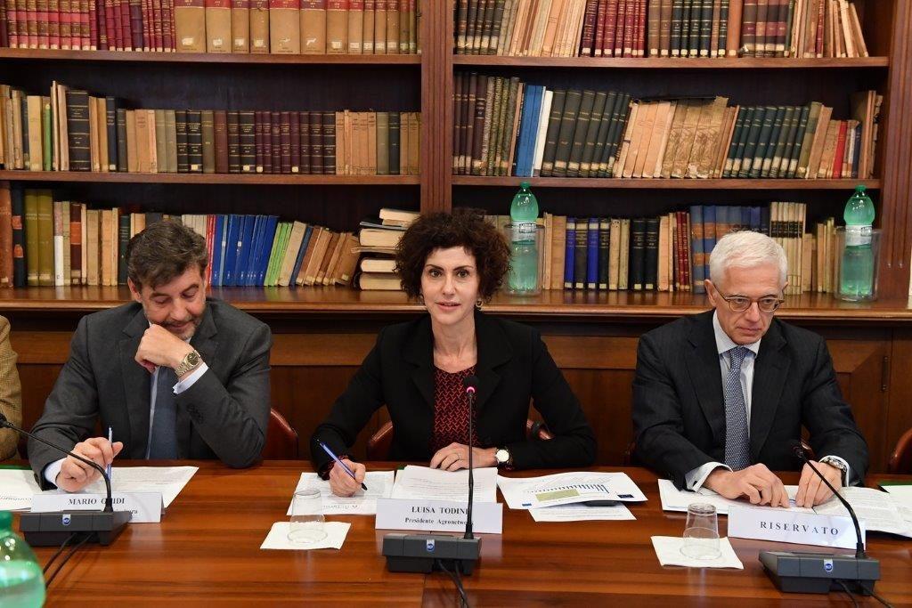 A Roma lo scorso 2 febbraio è stato presentata Agronetwork l'associazione che faciliterà il dialogo tra le imprese che operano nel settore agroalimentare
