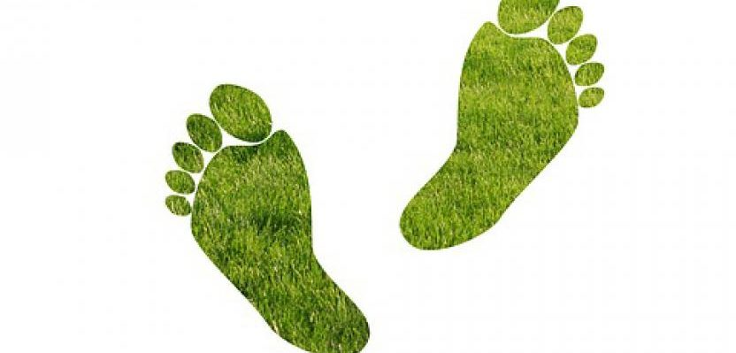 Come ridurre la nostra impronta ecologica? Il nostro impatto sull'ambiente, quella traccia di insostenibilità che lasciamo ogni giorno nel mondo...