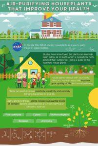 I consigli della NASA per ridurre l'inquinamento indoor