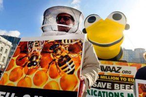 Petizione Avaaz in europa per le api