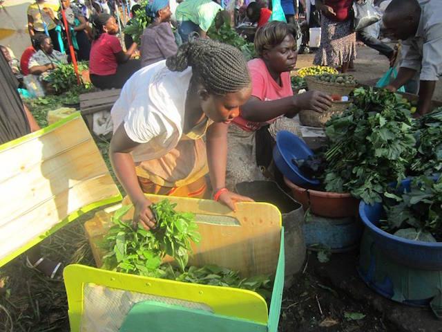 Riduzione dello spreco agricolo
