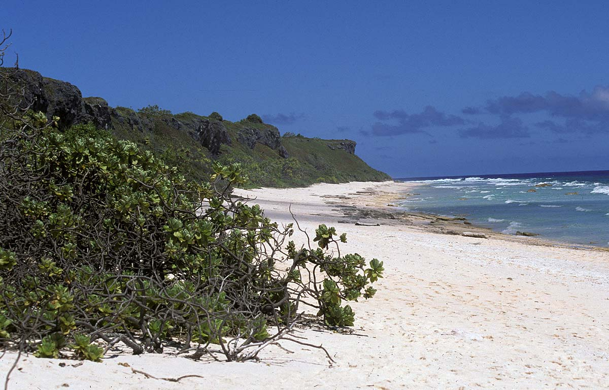 Henderson-Island