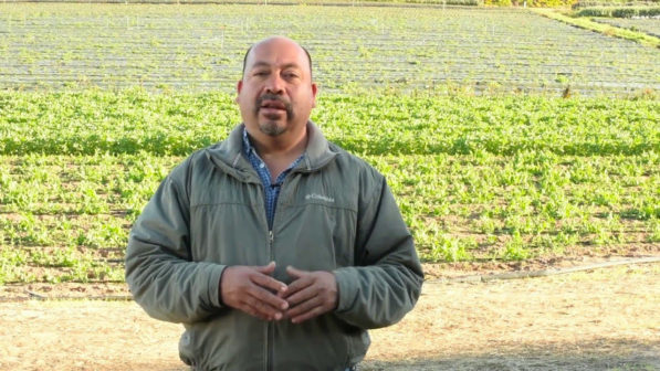 Javier Zamora di JSM Organic Farms - biodiversità in agricoltura