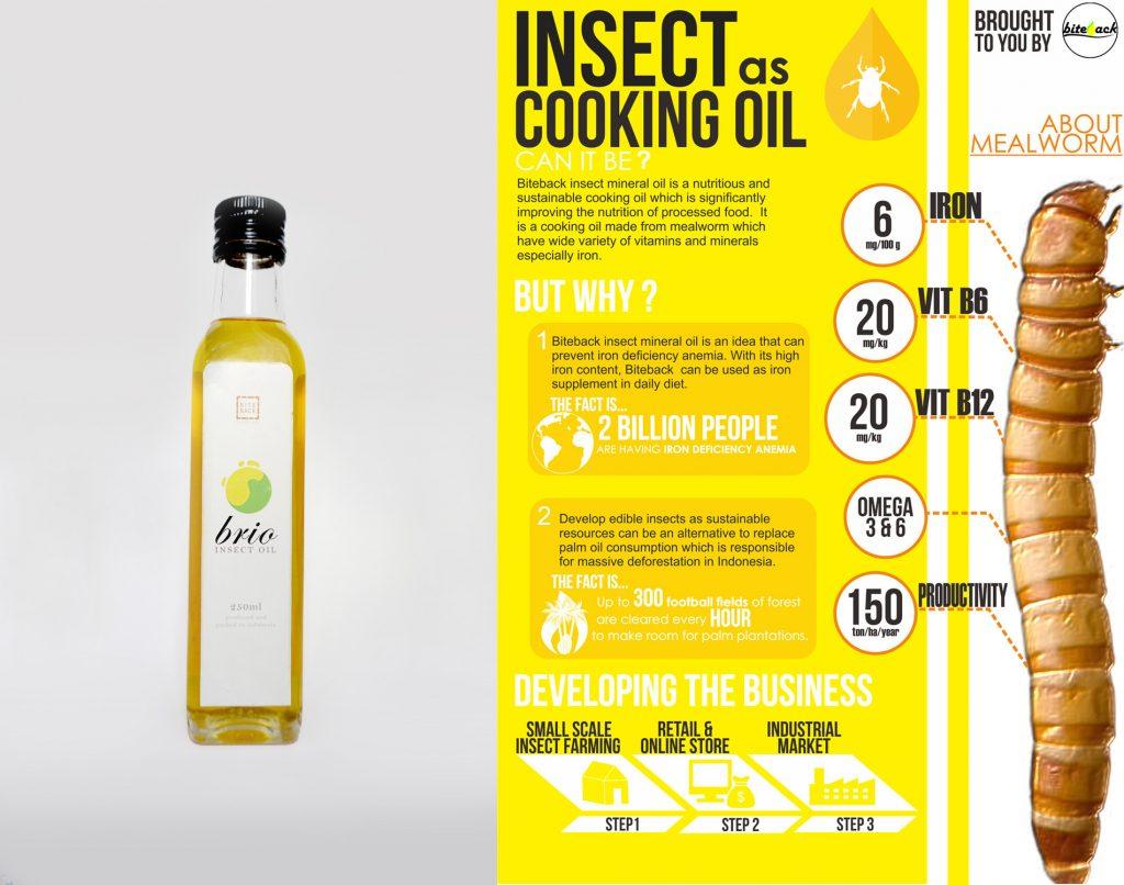 Olio da cucina dagli insetti