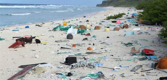 rifiuti plastici henderson island