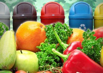 abbattimento spreco alimentare